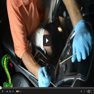 Detail King Promo Video For Cobra Mobile Detailing