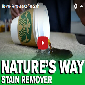 How To Remove A Coffee Stain